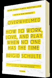 Brigid's book