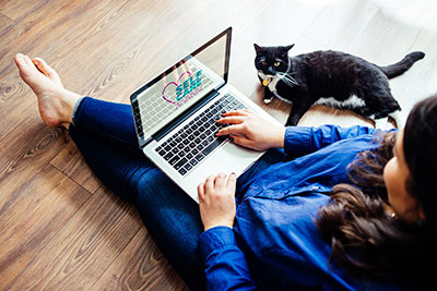 Woman using laptop with a cat lying beside her